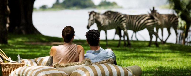 Honeymoons Safari,Safari holidays in Africa